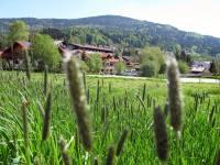 Bauernhof im Bayerischen Wald