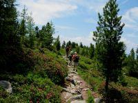 Wellnessurlaub Wandern