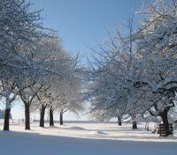 Wellnessurlaub Österreich Alpen im Winter