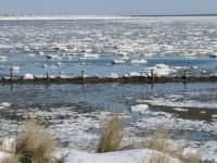 Das Wattenmeer im Winter - Erholung für Körper und Geist