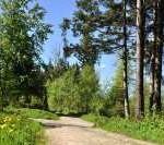 Wellnessurlaub im Bayrischen Wald