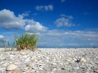 Wellnessurlaub Nordsee
